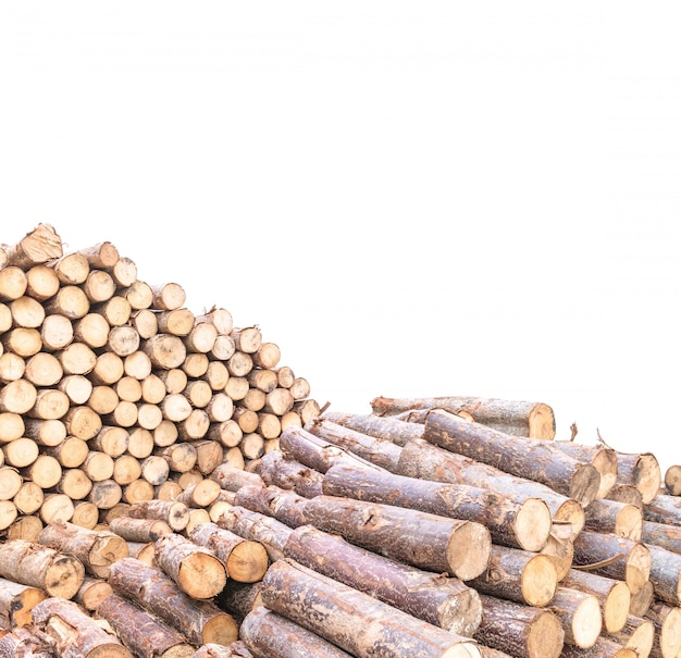 Closeup pile of timber isolated on white background
