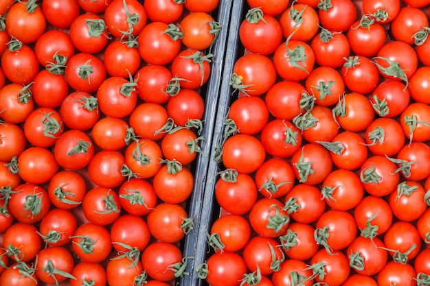Closeup plenty red fresh ripe cherry tomatoes together with stems are awaiting distribution in box on farmers market.