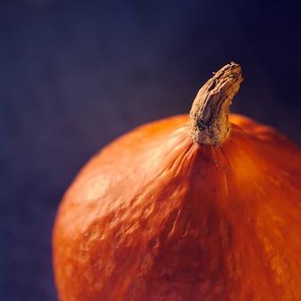 A closeup portrait of a pumpkin on a concrete background