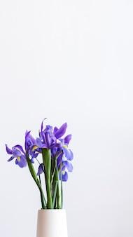 Primo piano di iris viola in uno sfondo del telefono cellulare vaso bianco