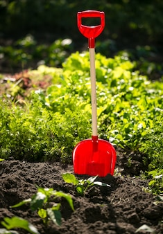 Closeup red shovel on garden bed at sunny day