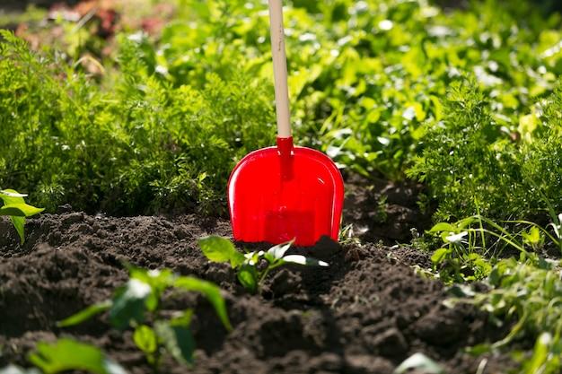 クローズ アップの赤いスペードが庭のベッドで立ち往生