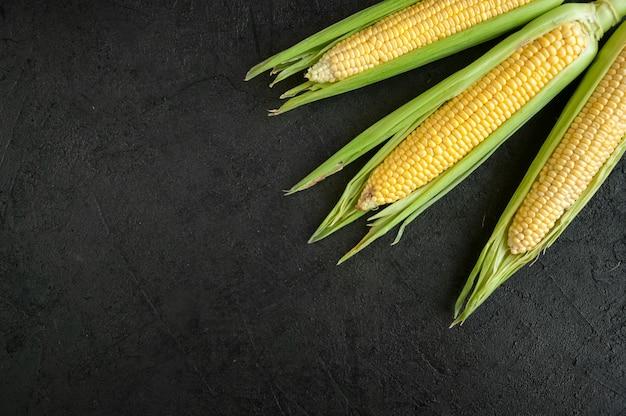 Closeup ripe fresh corn on dark background.