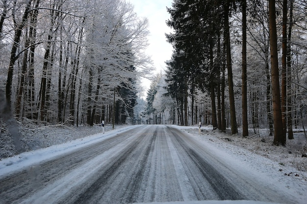 Closeup of a road in the forest in winter