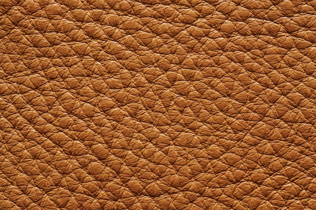 Closeup of seamless beige leather texture for background
