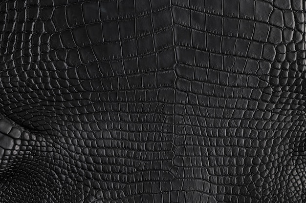 Closeup of seamless crocodile black leather texture for background