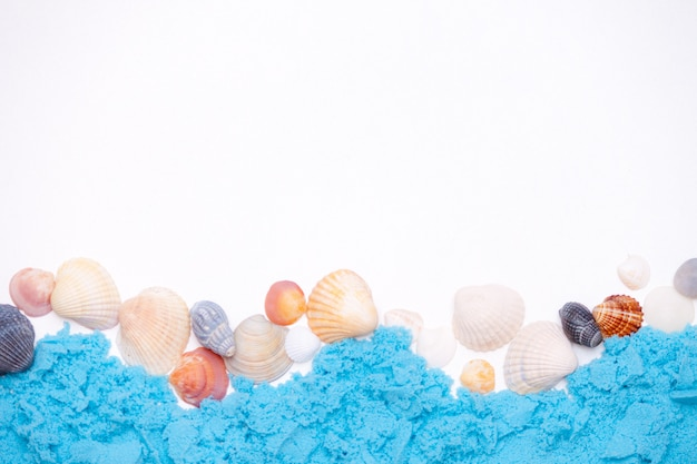 Closeup of seashells lying on white background with copyspace. summer background concept.