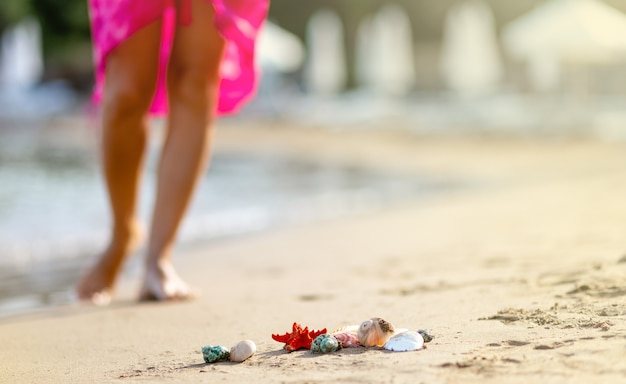 Closeup shells on sand, blurred of barefoot female young adult lower body relaxing in sea water on summer holiday. sunset light. travel concept. copy space