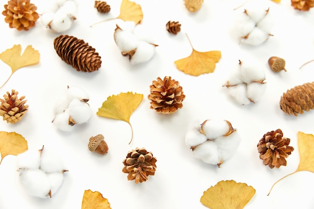 Closeup shot of autumn leaves and conifer cones, coton plants on white surface