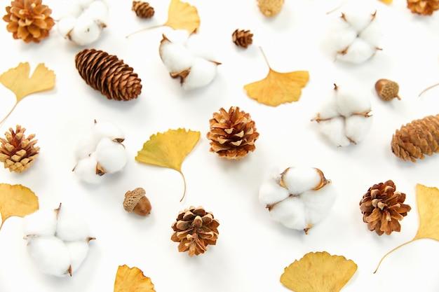 Colpo del primo piano delle foglie di autunno e dei coni di conifere, piante di coton sulla superficie bianca