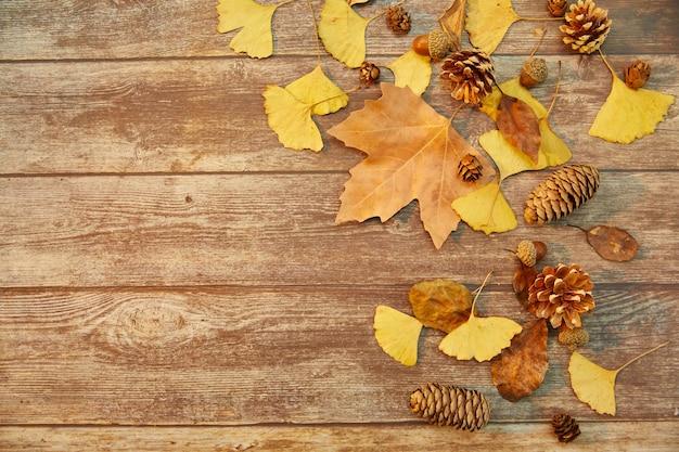 Primo piano di foglie autunnali e coni di conifere su fondo di legno