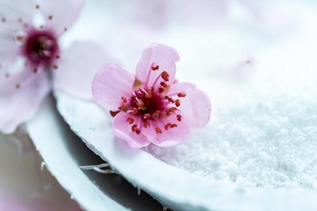 Colpo del primo piano di un bel fiore rosa su un piatto bianco pieno di zucchero di betulla