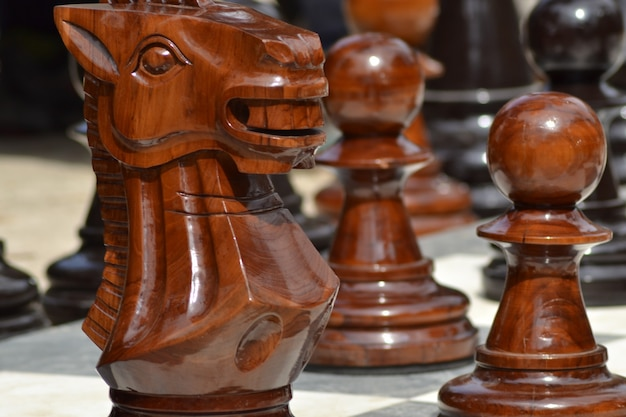 Closeup shot of big wooden outdoor chess figures with a blurred background