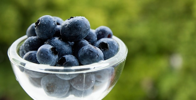 Closeup shot of blueberries in a glass bowl