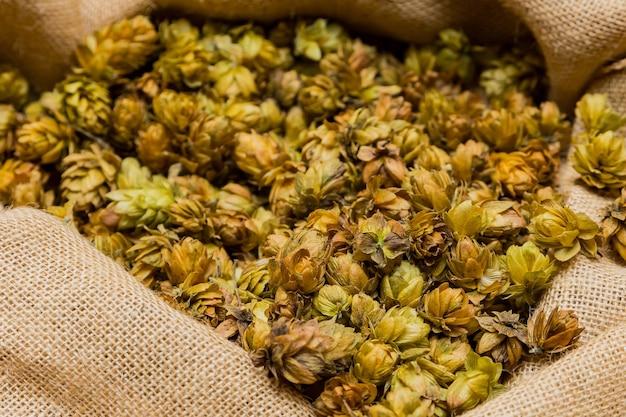 Colpo del primo piano di luppolo essiccato in un sacco per la produzione di birra