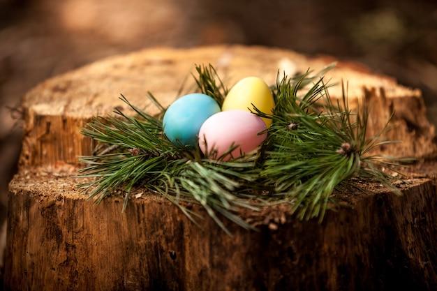 Closeup shot of easter eggs lying on stump
