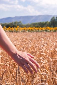 Primo piano di una donna in un campo di grano in una giornata di sole