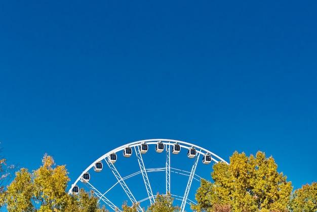 Colpo del primo piano di una ruota panoramica vicino agli alberi sotto un cielo blu chiaro