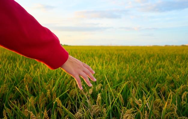 Colpo del primo piano di una mano di una giovane donna coperta da giacca rossa con campo verde
