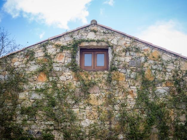 Primo piano di una casa con muro di pietra chiaro e vecchia finestra con piante verdi