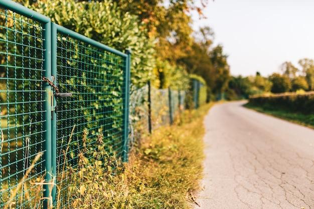 Primo piano di una recinzione metallica e di cespugli vicino a una strada