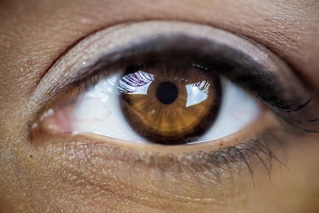 아름 다운 갈색 눈의 근접 촬영 샷