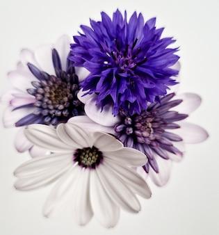 흰색 배경에 고립 된 아름 다운 꽃 꽃다발의 근접 촬영 샷