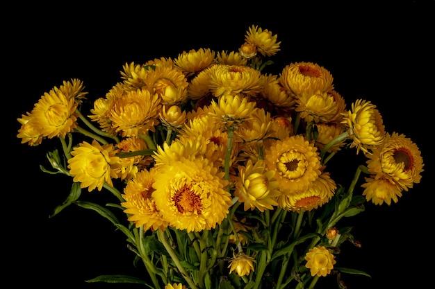 어두운 배경 뒤에 노란색 꽃의 꽃다발의 근접 촬영 샷