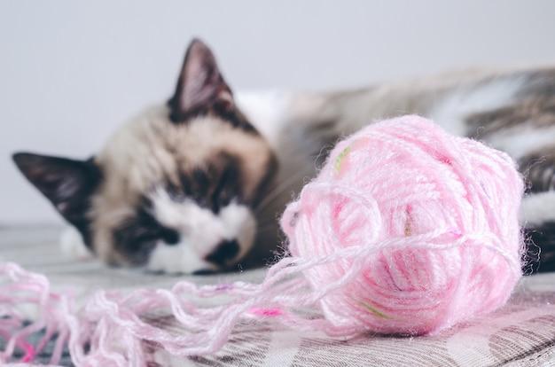 ウールのピンクのボールの近くで眠っているかわいい茶色と白猫のクローズアップショット