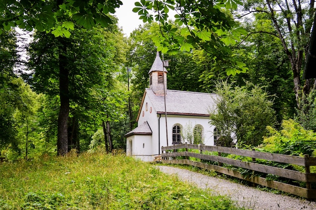 숲에 있는 작은 흰색 교회의 근접 촬영