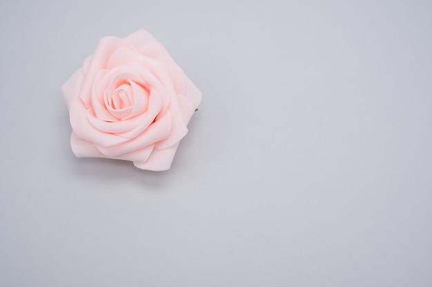 복사 공간이 파란색 배경에 고립 된 단일 핑크 장미의 근접 촬영 샷
