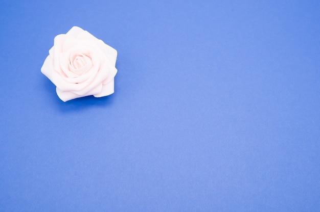 コピースペースで青い背景に分離された単一のピンクのバラのクローズアップショット
