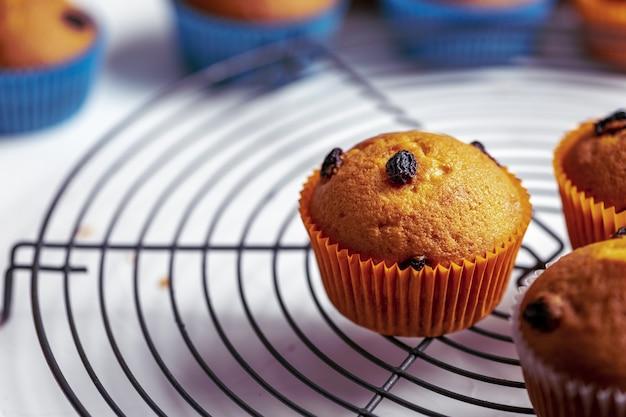 흰색 바탕에 주황색과 파란색 종이 컵 케이크의 근접 촬영 샷