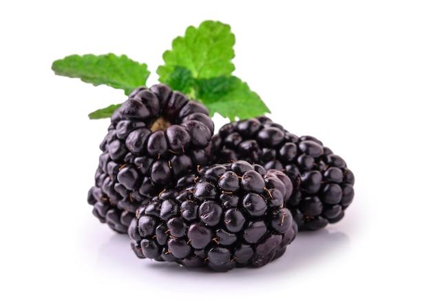 신선한 검은 딸기의 근접 촬영 샷