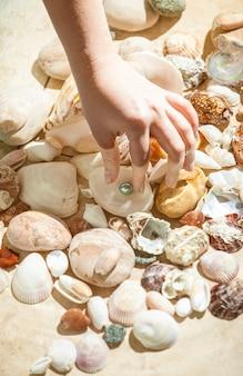海の底から黒真珠を拾う手のクローズ アップ ショット