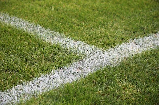 독일의 녹색 축구장에 그려진 흰색 선의 근접 촬영 샷