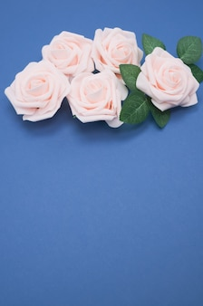 복사 공간이 파란색 배경에 고립 된 핑크 장미의 근접 촬영 샷