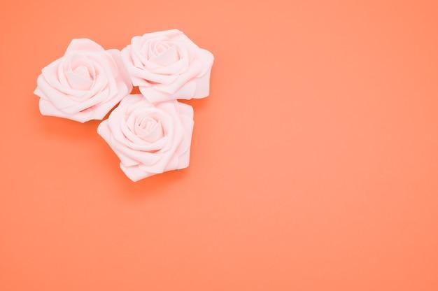 Крупным планом выстрел из розовых роз, изолированных на коралловом фоне с копией пространства
