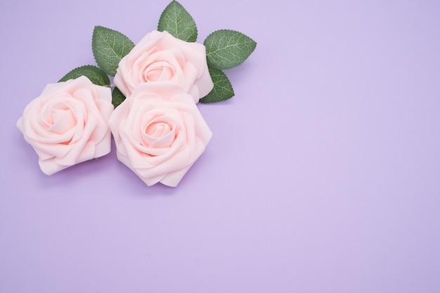 コピースペースと紫色の背景に分離されたピンクのバラのクローズアップショット
