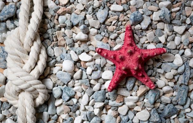 海でカラフルな小石の上に横たわっている赤いヒトデと海の結び目のクローズアップショット