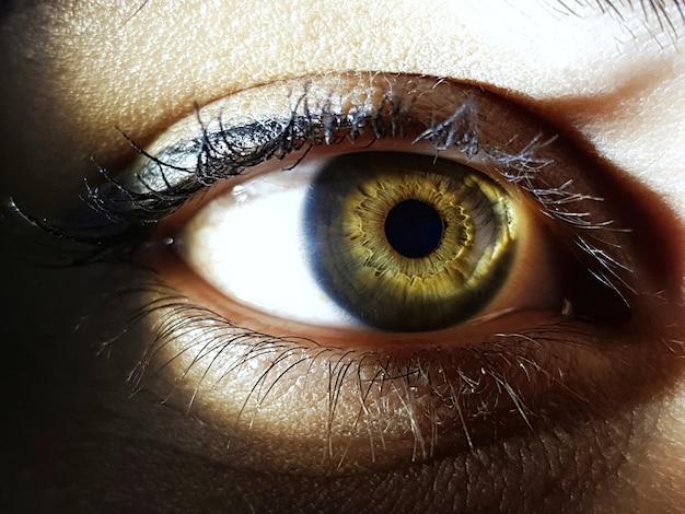 女性の緑色の目のクローズアップショット