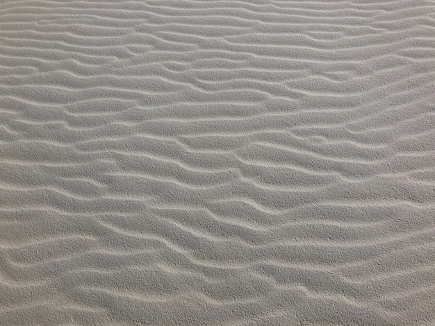 ニューメキシコ州の砂漠の風にさらされた砂のクローズアップショット-背景に最適