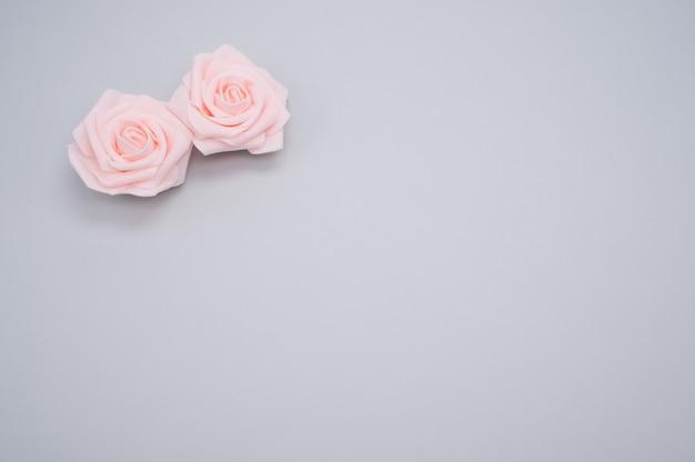 복사 공간이 파란색 배경에 고립 된 두 핑크 장미의 근접 촬영 샷