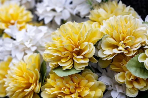 정원에서 자라는 노란색과 흰색 국화 꽃의 클로즈업 샷