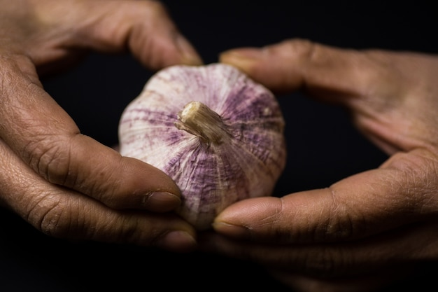 Closeup shot of a person peeling garlic