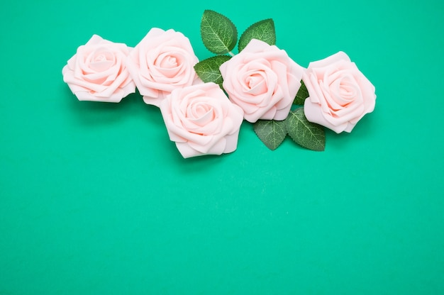Closeup shot of pink roses isolated on a green background with copy space