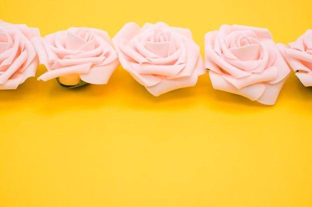 Colpo del primo piano di una fila di rose rosa isolato su uno sfondo giallo con spazio di copia