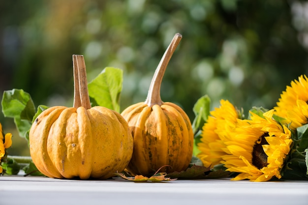 Closeup shot of two pumpkins near sunflowers with a blurred nature
