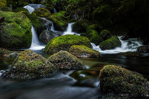 Closeup shot of a waterfall surrounded by mossy rocks