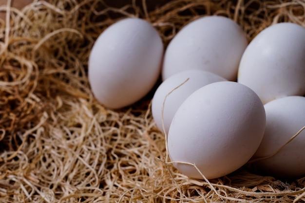 Colpo del primo piano delle uova bianche sulla superficie del fieno